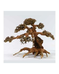 Aqua-Bonsai Small Piece 15-20cm (H065) *New*
