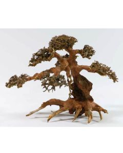 Aqua-Bonsai Large Piece 30-40cm (H067) *New*
